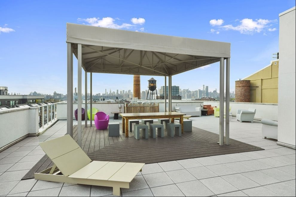 New York City Real Estate | View 125 North 10th Street, #NGD | Common South Roof with Spectacular Views