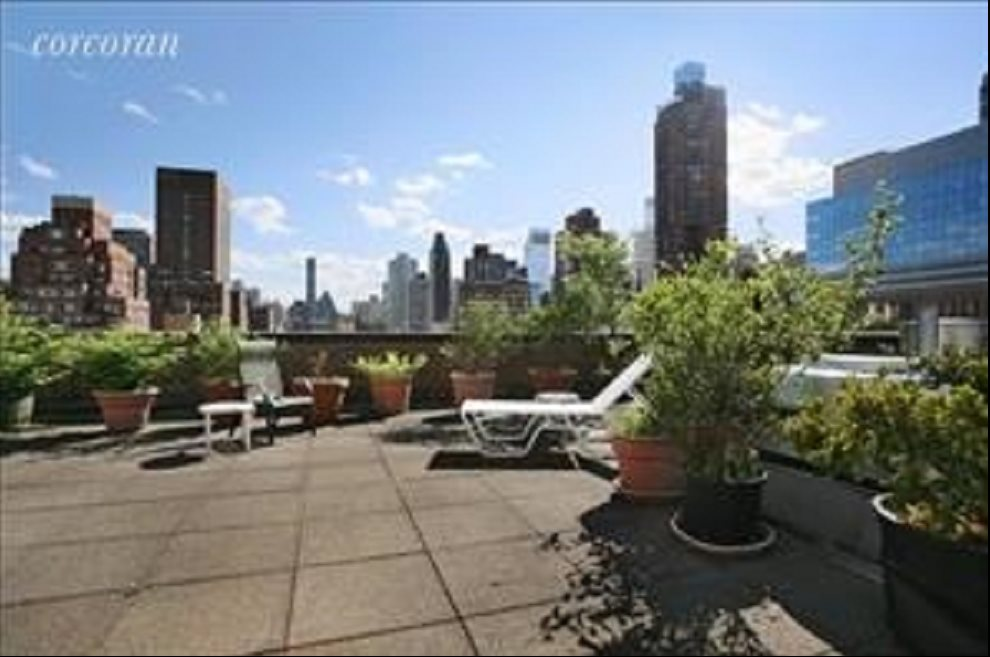 New York City Real Estate | View 333 East 66th Street, #11B | Rooftop