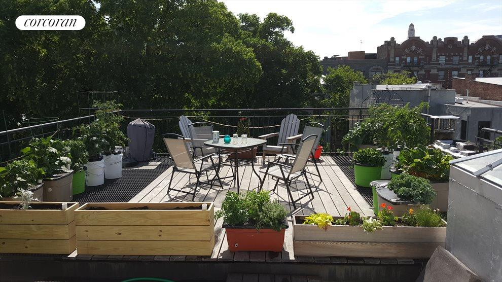 New York City Real Estate | View 474 Waverly Avenue, #3 | Private Roof Deck