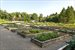 3872 Route 44th Street, Organic Garden with drip irrigation system