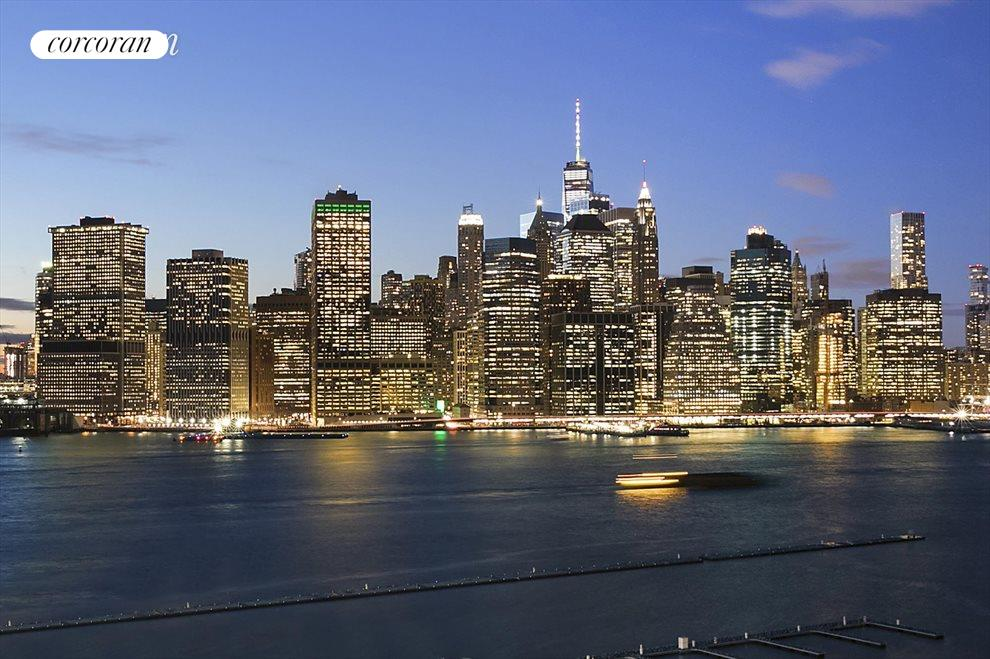 Wonderful Manhattan & harbor protected views