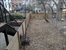 525A Quincy Street, Outdoor Space