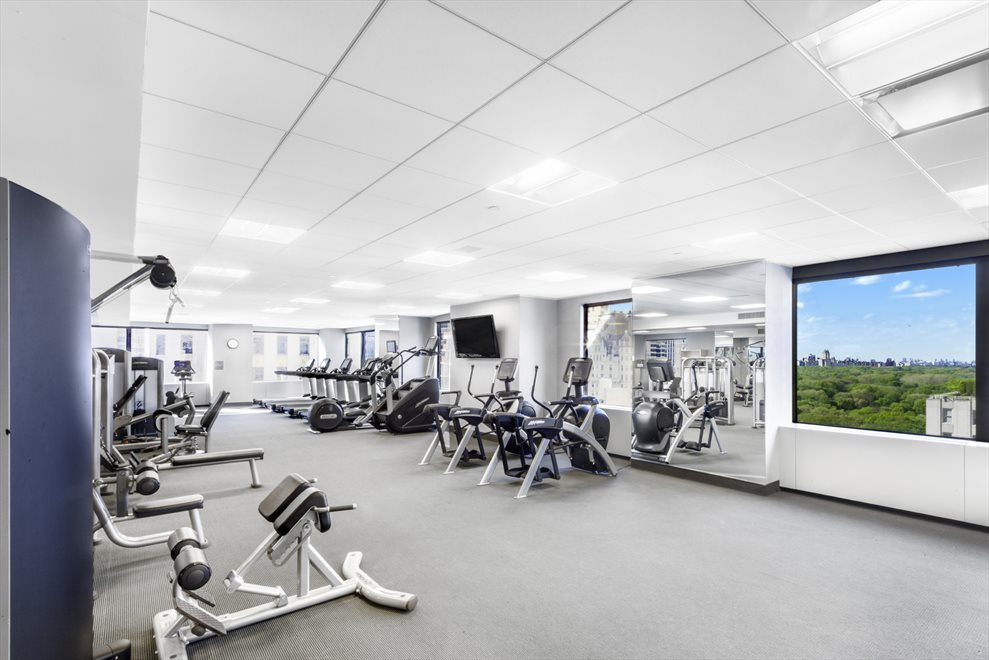 New York City Real Estate | View 721 Fifth Avenue, #59A | Gym Overlooking Central Park