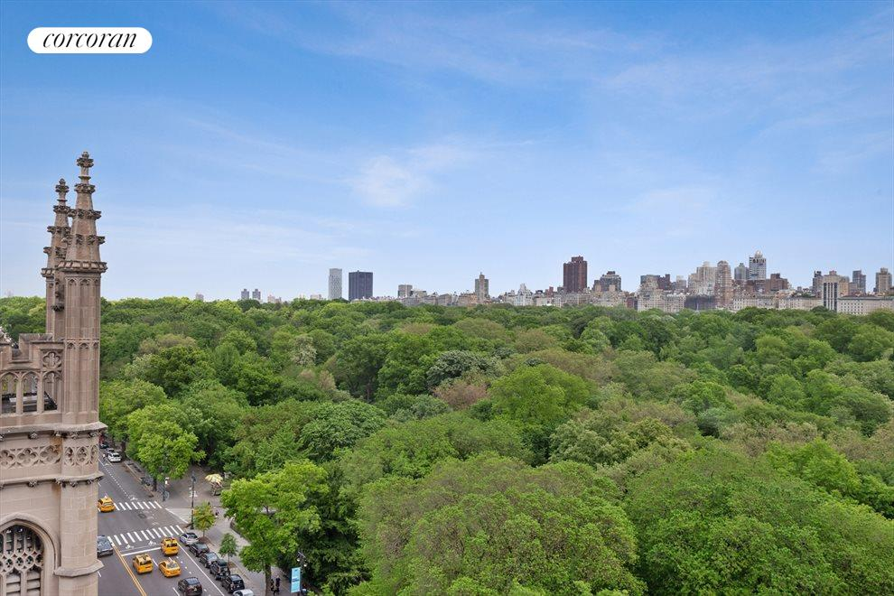 Direct Central Park View North