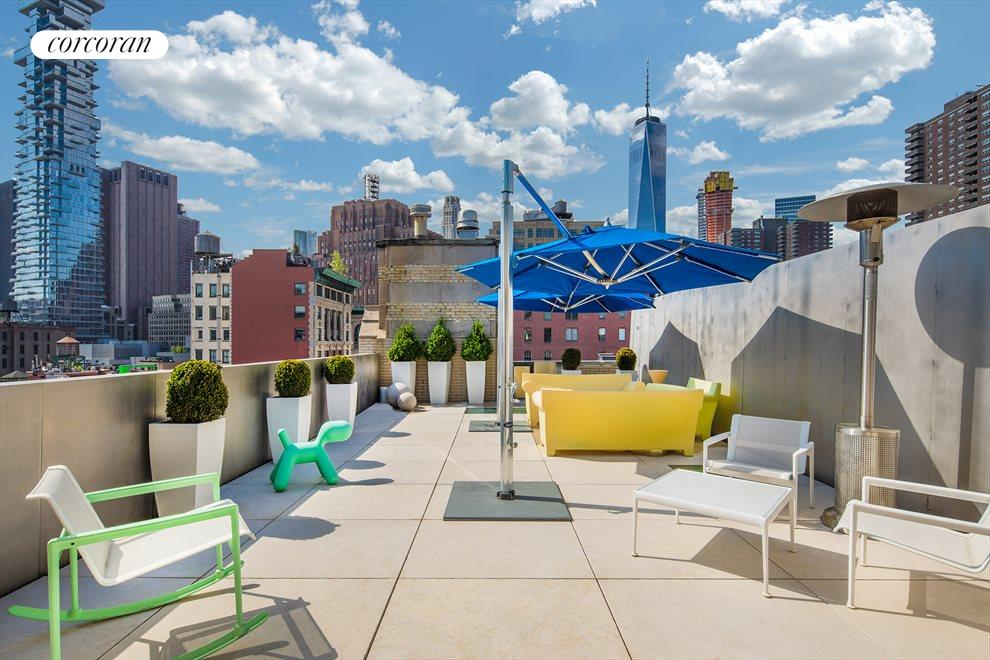 PRIVATE ROOF TOP -  PENTHOUSE LEVEL