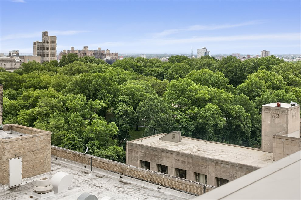New York City Real Estate | View 1 Grand Army Plaza, #4A | Prospect Park from the roof deck