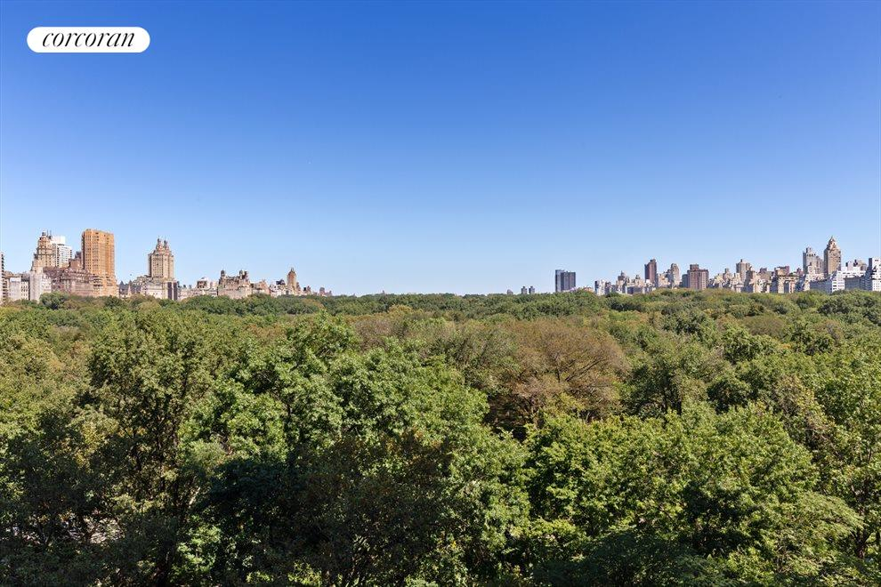 Breathtaking views of Central Park