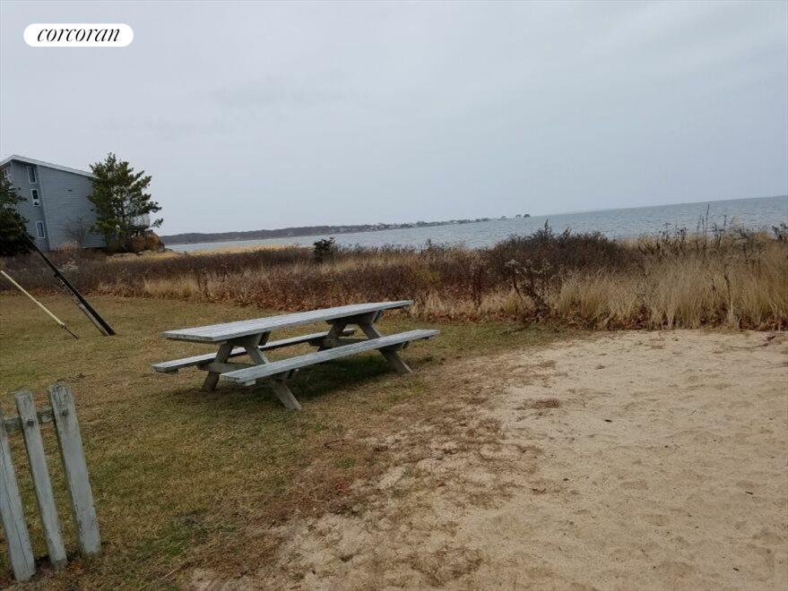 picnic on the community bay beach