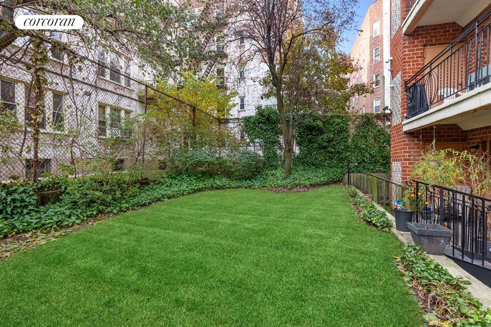 Lush and tranquil shared backyard