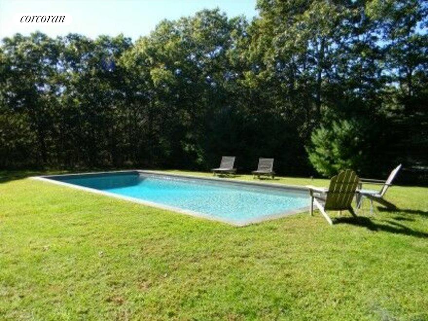 Sun-filled back yard and pool area
