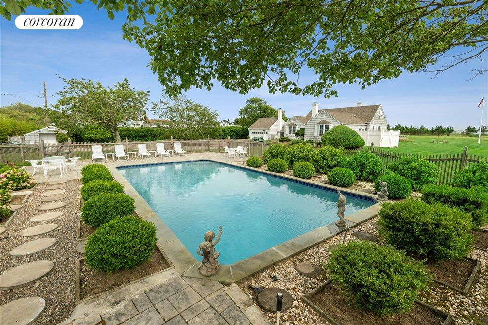 Pool Surrounded by Plantings