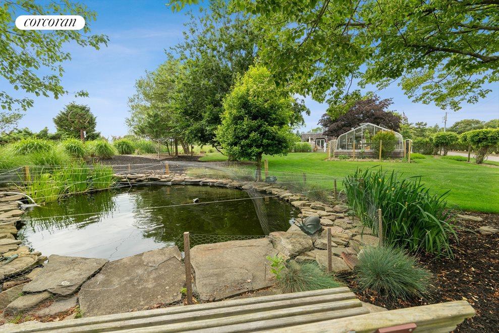 Koi Pond and Greenhouse