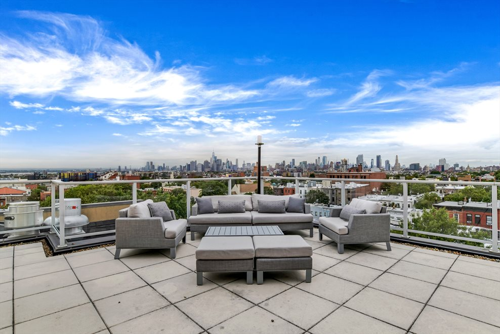 Stunning, Fully Furnished Common Roof Deck