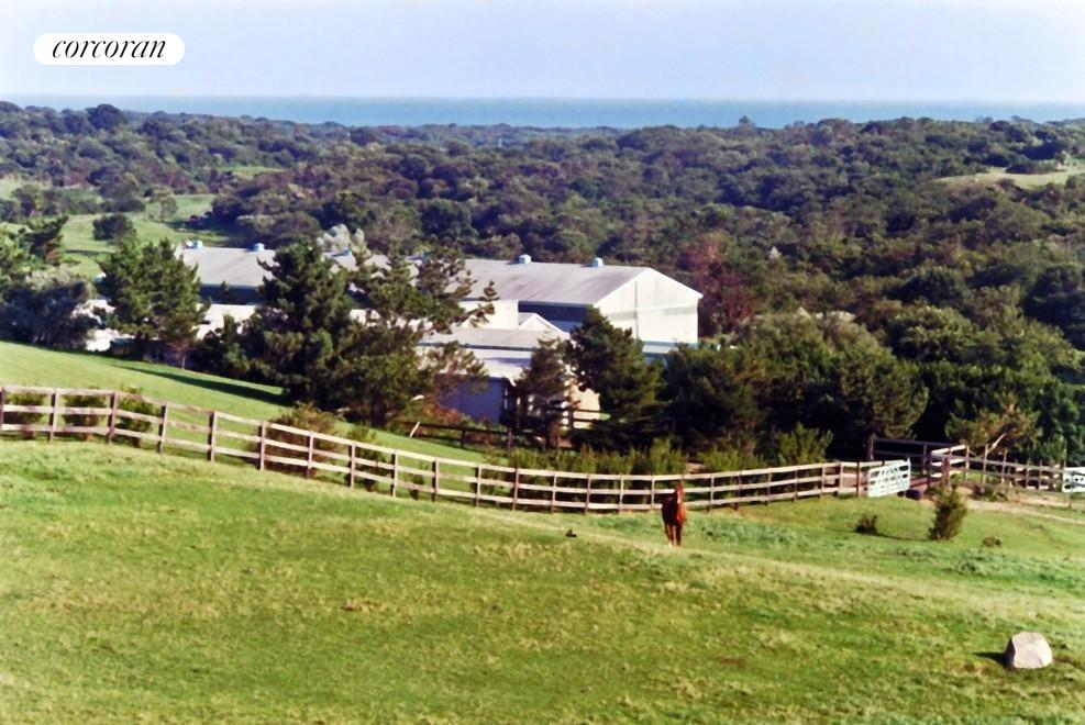 The Hamptons Real Estate | View 107 and 101 Startop Drive South | peaceful  ag preserve