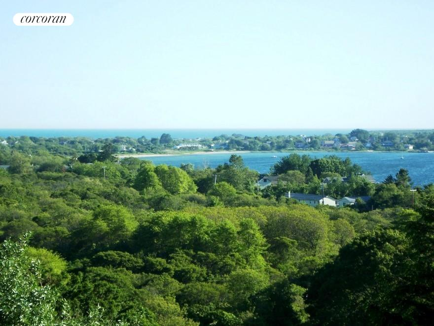 The Hamptons Real Estate | View 107 and 101 Startop Drive South | lake, parkland views