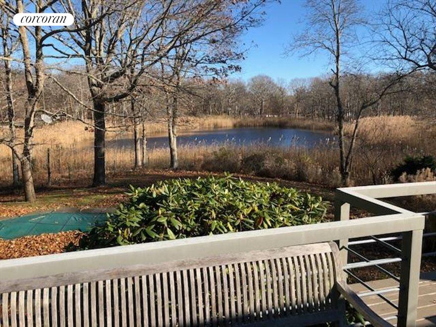 The Hamptons Real Estate | View 33 Peconic Avenue | room 2