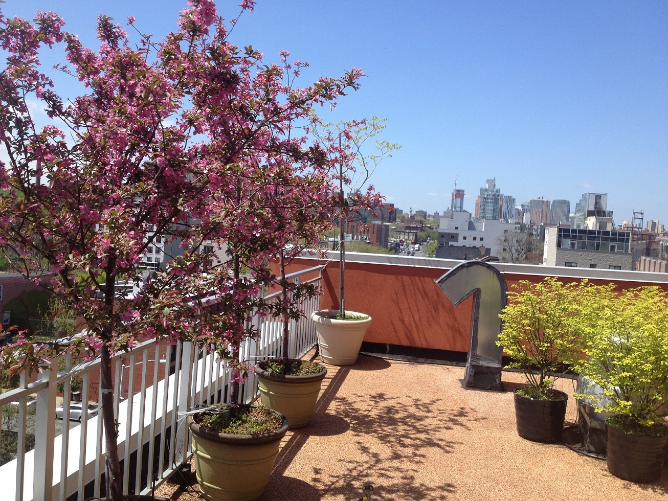 609 Myrtle Avenue, 2B, Private Terrace