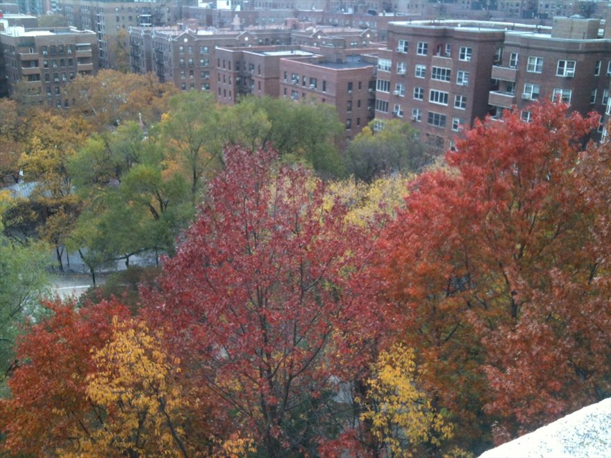 View from the roof deck Nov. 2014