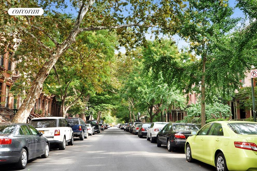 Tree-lined, Historic Astor Row