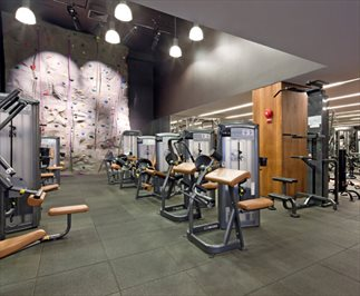 Gym and Rock Climbing Wall