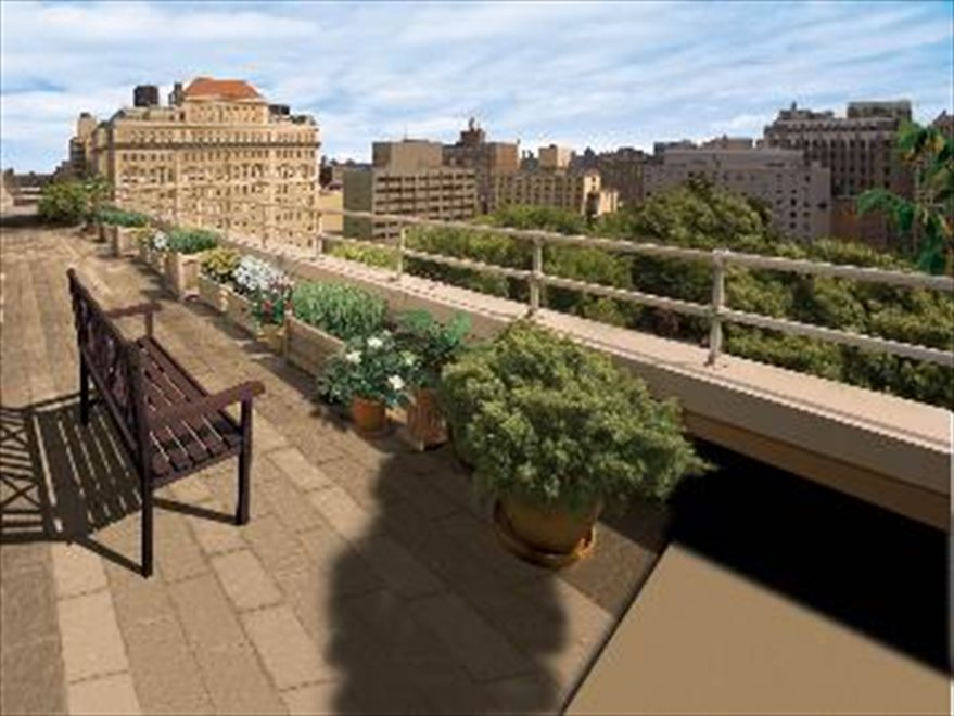 Enjoy the Picturesque Roof deck!