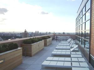 Roof Deck with Central Park and River Views