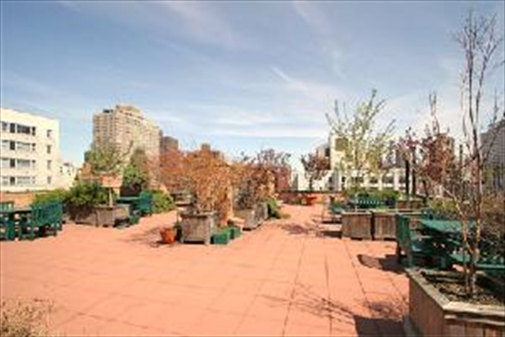 Planted Roof deck