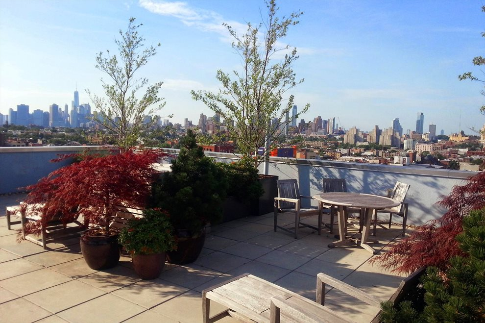 Roof Deck Manhattan view