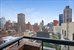 300 East 62nd Street, 1505, Terrace