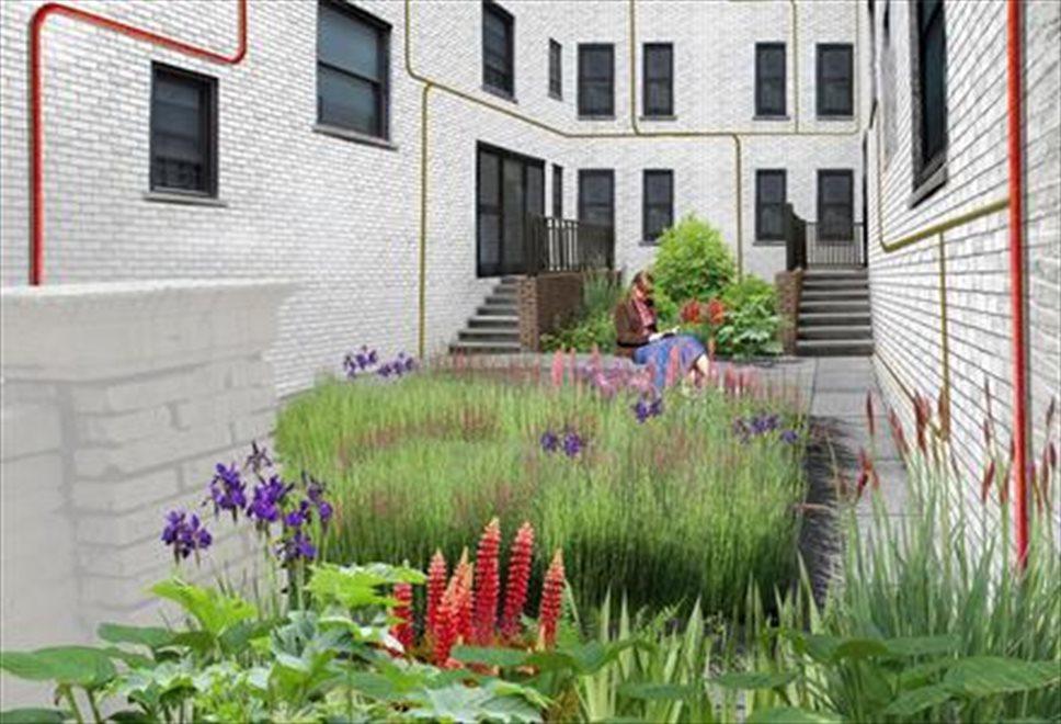 Lovely & Lush Common Garden