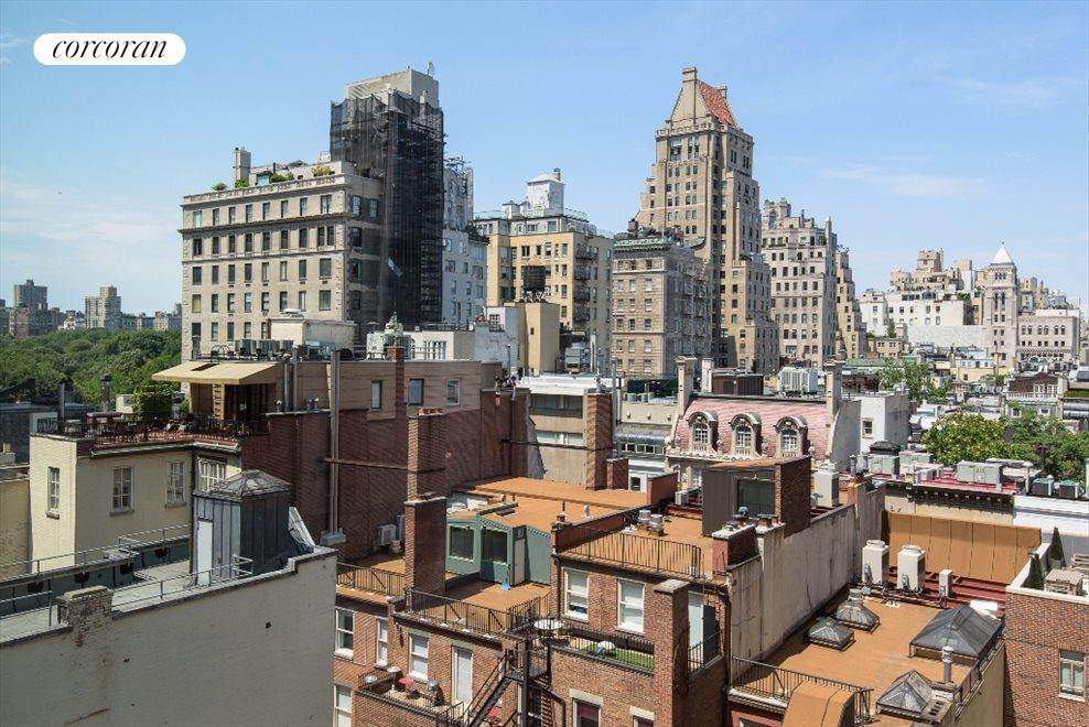 Central Park and view over UES Town Homes