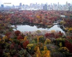 115 Central Park West, 30C, Other Listing Photo