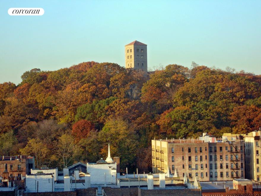 View in Autumn