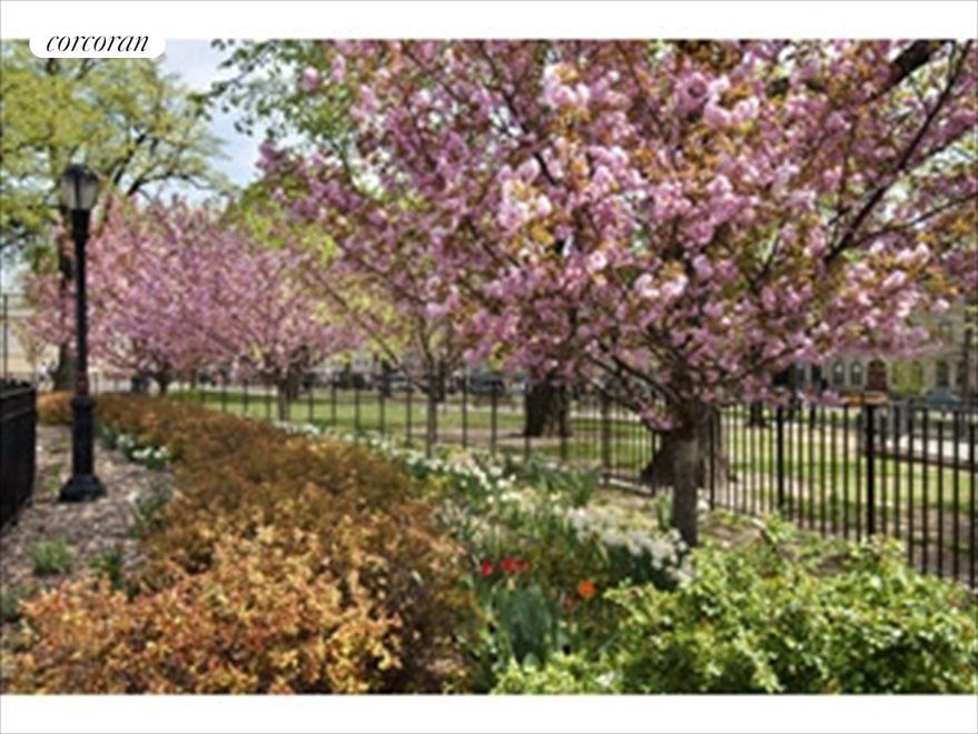 Bushwick Park