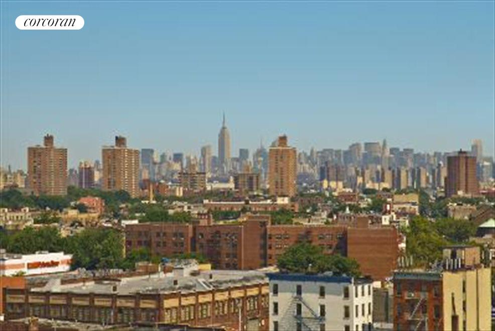 New York City Real Estate | View 892 Bergen Street, #10D | room 5