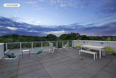 Gorgeous commonroof deck overlooking Prospect Park