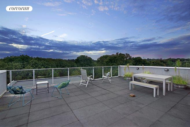 185 Ocean Avenue, 2C, Gorgeous commonroof deck overlooking Prospect Park