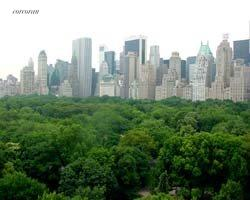 55 Central Park West, 13D, Other Listing Photo