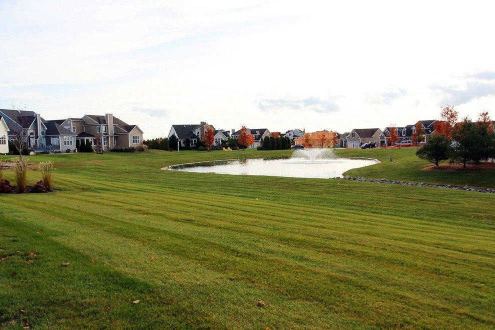 Pond View Backyard