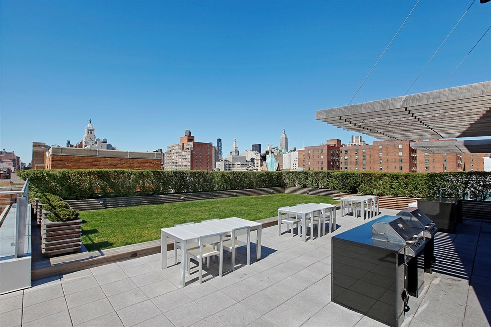 Roof Deck Lawn and BBQ Picnic Area