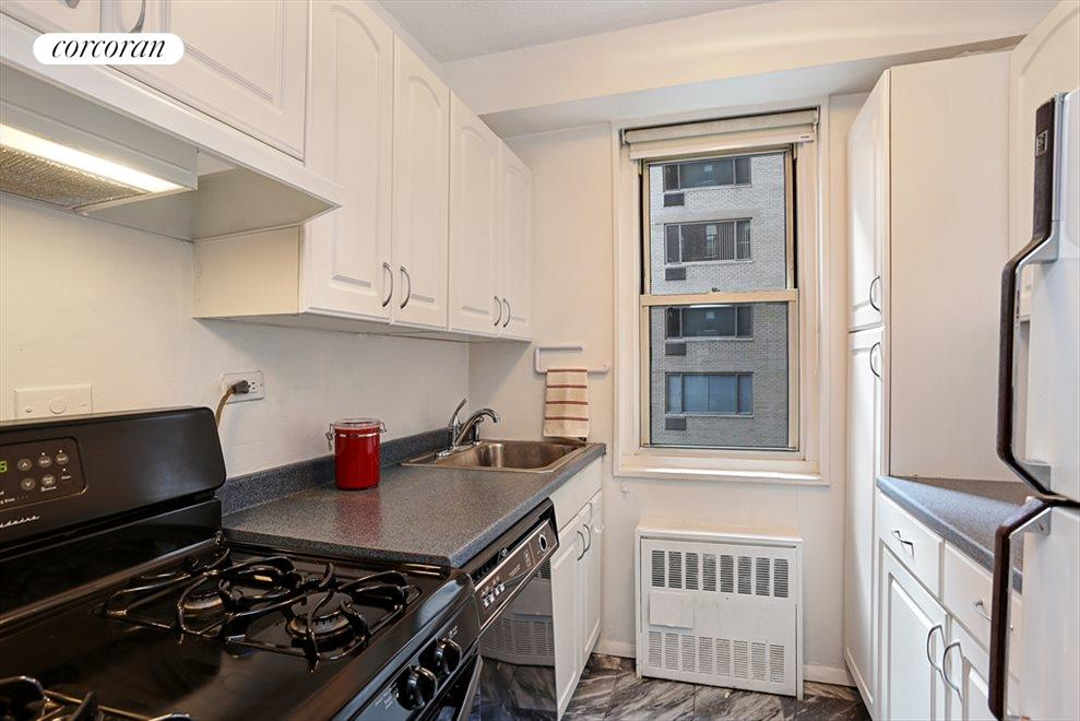Windowed Renovated Kitchen