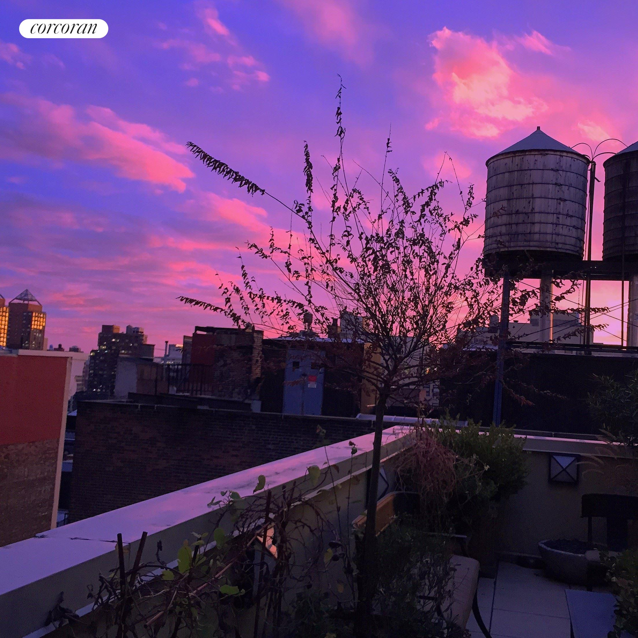 141 Fifth Avenue, PHE, Terrace Sunset