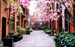 156 East 36th Street, Historic Mews in Springtime