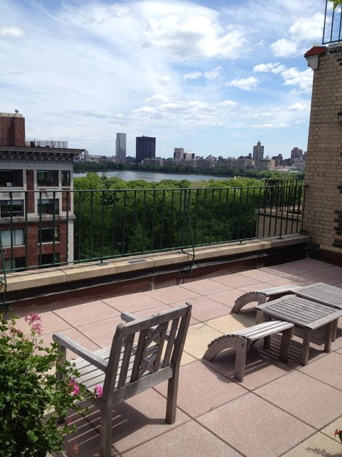 Panoramic park views from furnished roof deck.