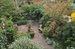 84 Woodhull St Garden