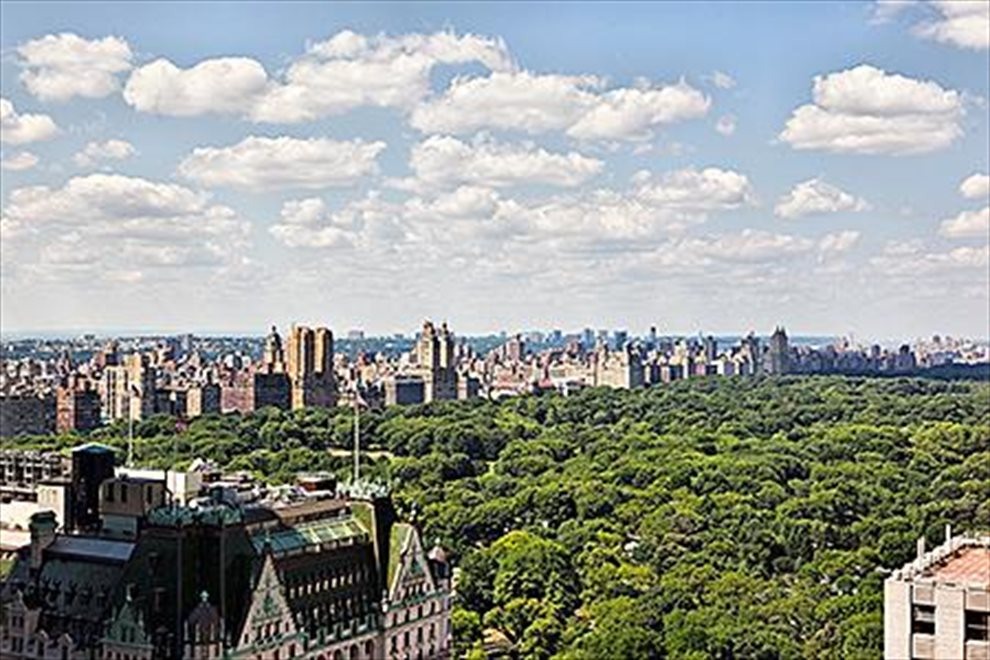 New York City Real Estate | View Fifth Avenue | room 8