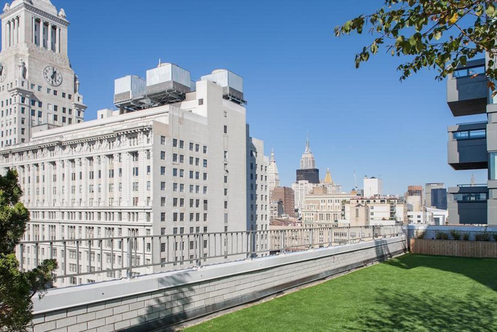 New York City Real Estate | View 111 Third Avenue, #8K | Rooftop Deck