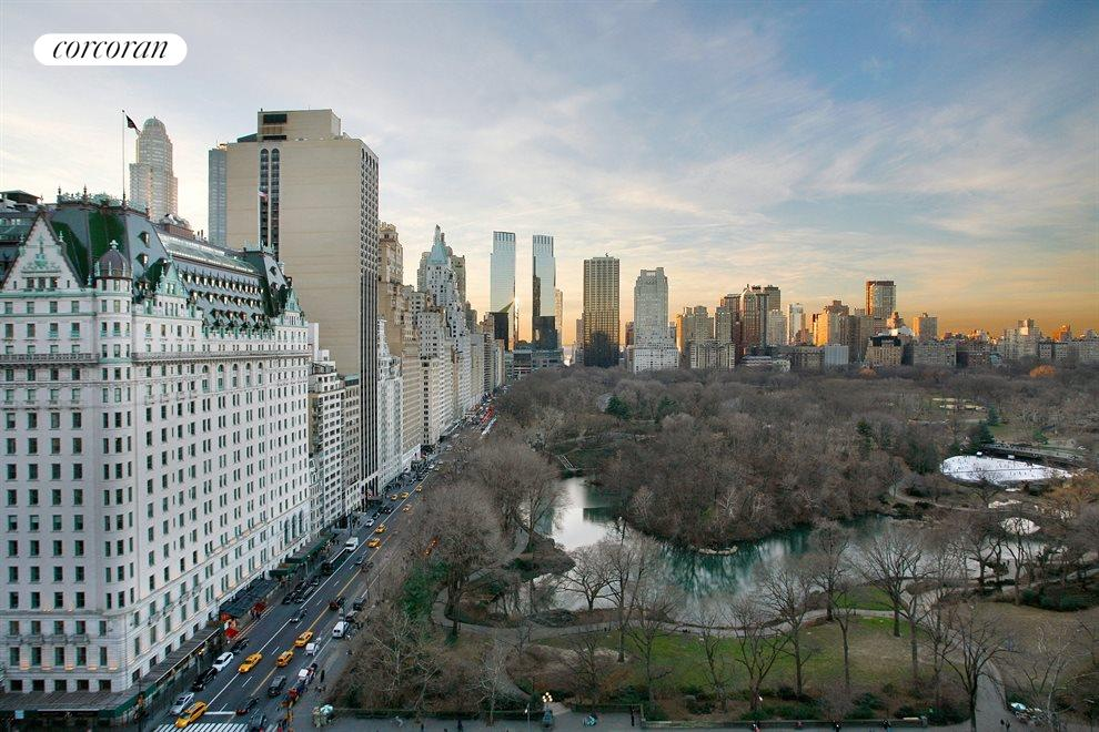Views of Central Park and The Plaza Hotel