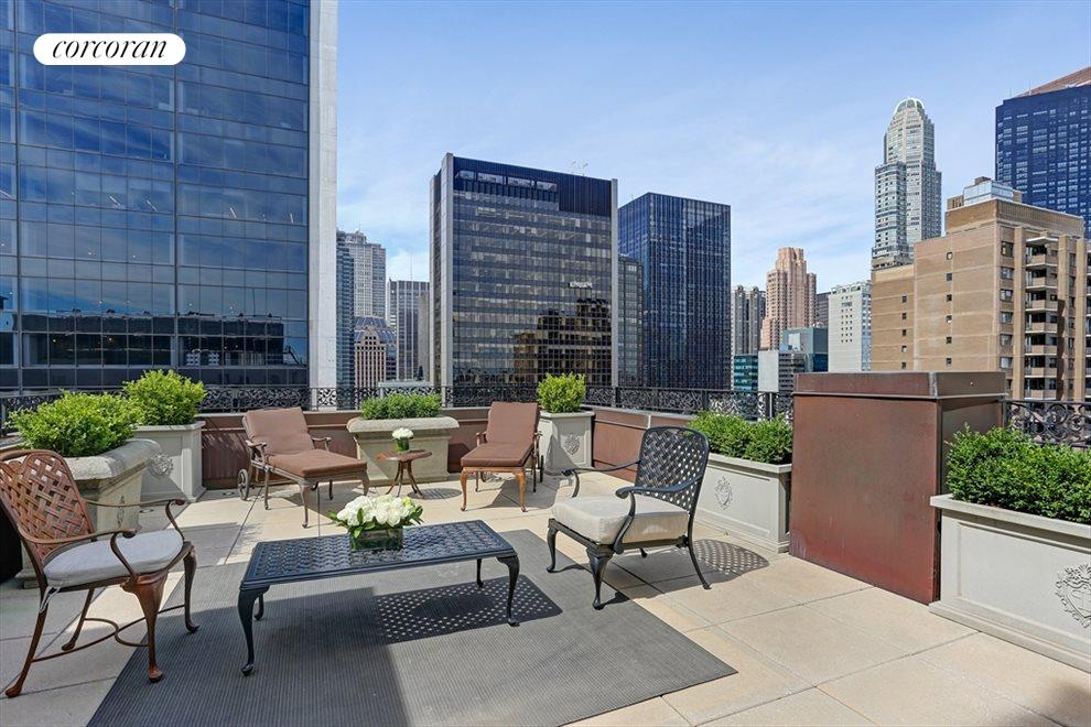 New York City Real Estate | View 768 Fifth Avenue, #PH2040 | Private terrace