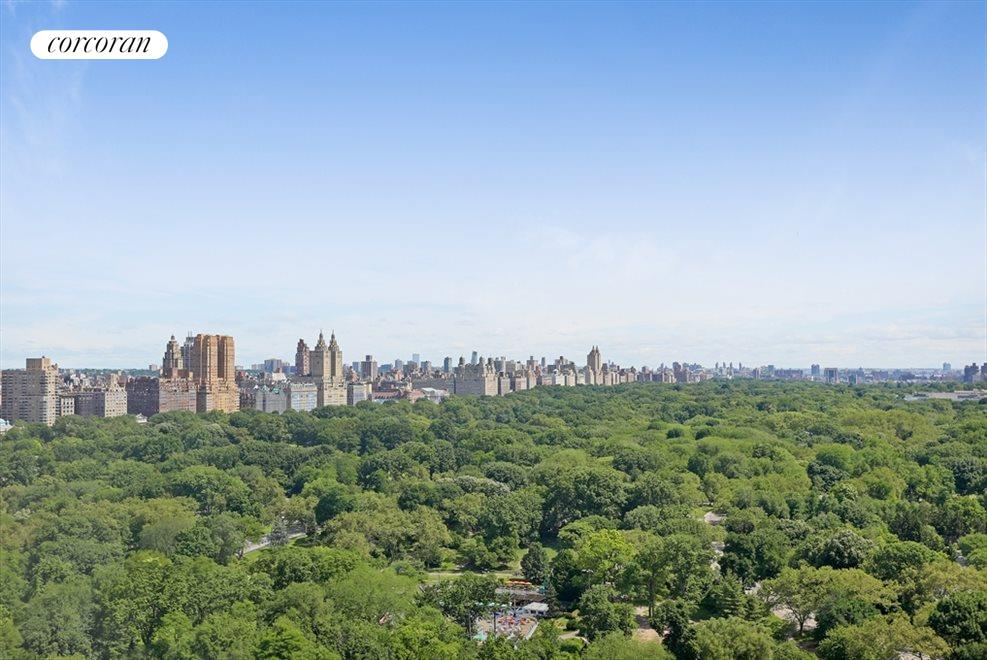 New York City Real Estate | View 768 Fifth Avenue, #PH2040 | View